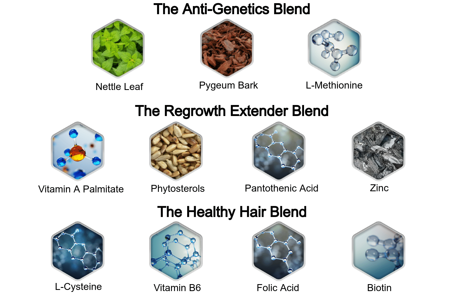 Hair Revital X Ingredients